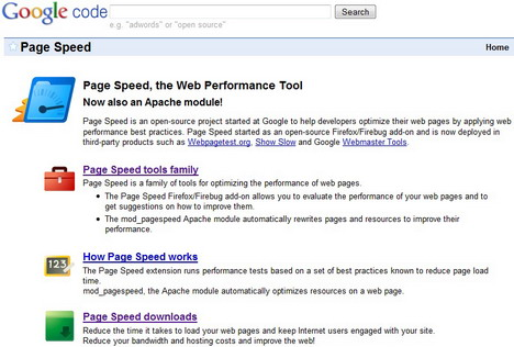 google_page_speed
