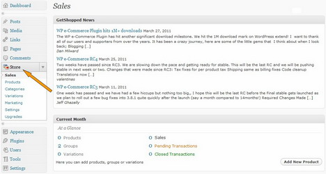 how_to_turn_wordpress_blog_into_an_online_store_or_e_commerce_site_1