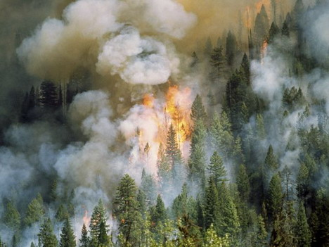 idaho_fire