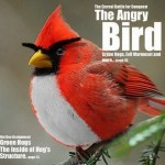 Ultimate Collection of Angry Birds Desktop Wallpapers and Photo Gallery