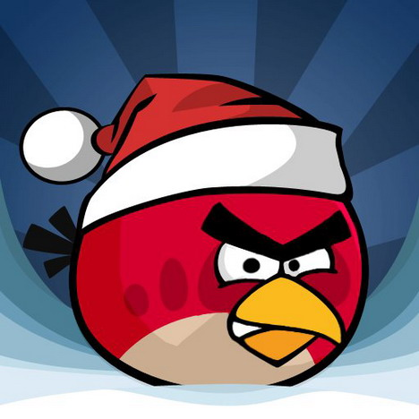 angry_birds_photo_03