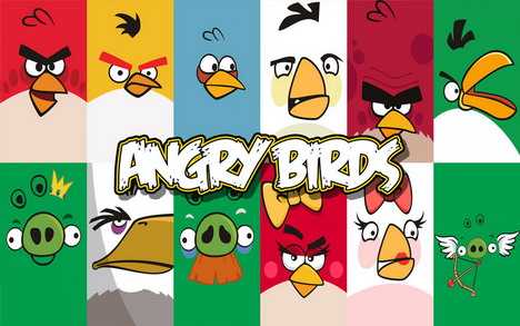 angry_birds_photo_07