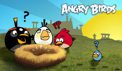 angry_birds_photo_18