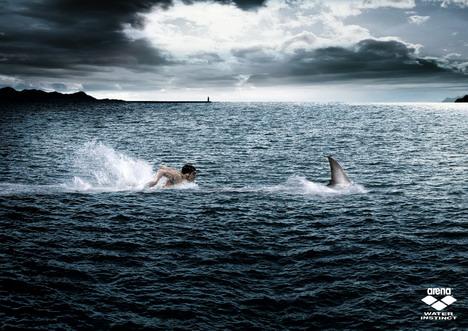arena_swimwear_predator