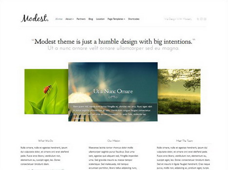 modest_wordpress_theme