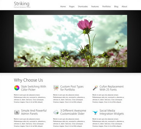 striking _premium_corporate_and_portfolio_wp_theme
