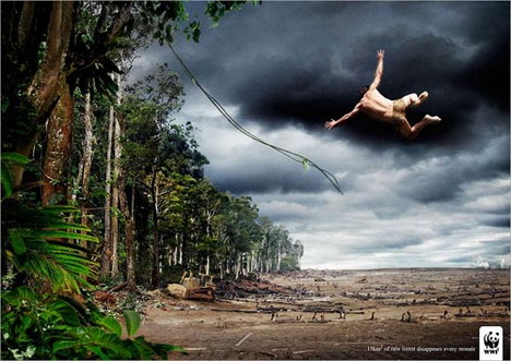 wwf_save_your_forests