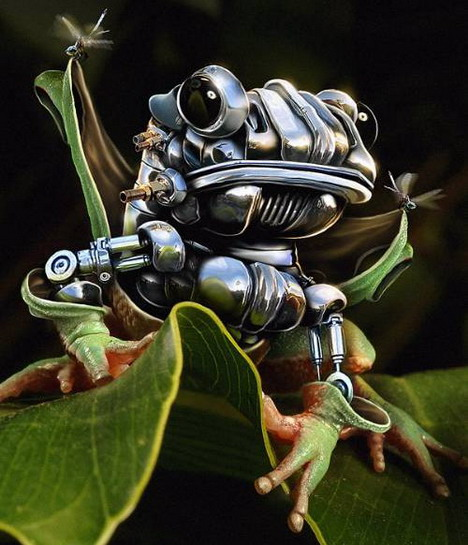 the_making_of_a_robotic_frog