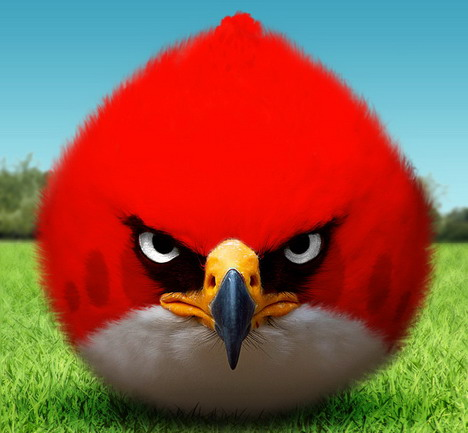 angry_birds_wallpapers_and_photos_028