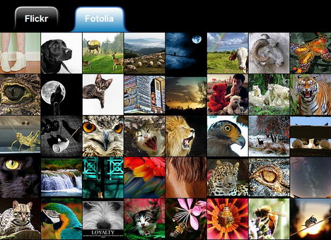 picturesandbox_useful_tools_for_flickr
