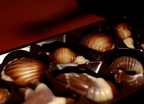 shell_shape_chocolates_2