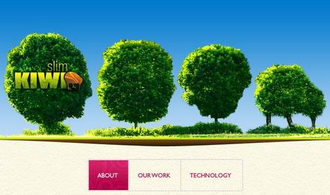 slim_kiwi_green_inspired_web_design