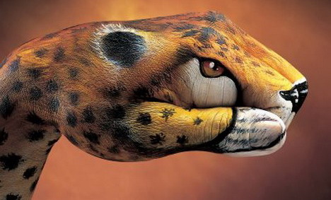 cheetah_best_optical_illusion