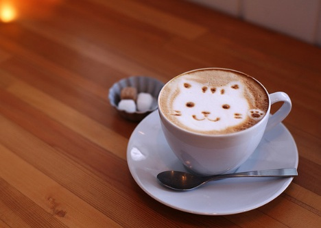 cute_kitten_50_beautiful_and_delicious_latte_art