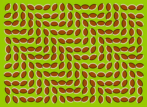 moving_beans_best_optical_illusion