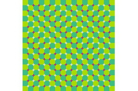 primrose_field_best_optical_illusion