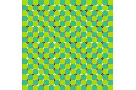 primrose_field_best_optical_illusion
