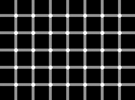 white_circles_at_the_intersections_best_optical_illusion