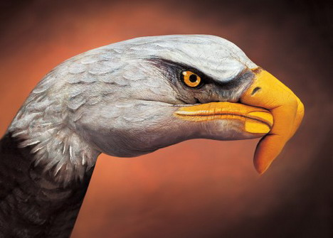 bald_eagle_on_brown_best_animal_hand_painting