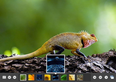 best_slideshow_and_photo_gallery_plugins_for_wordpress_blog
