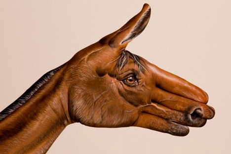 brown_horse_on_white_best_animal_hand_painting