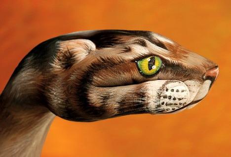 cat_on_orange_best_animal_hand_painting