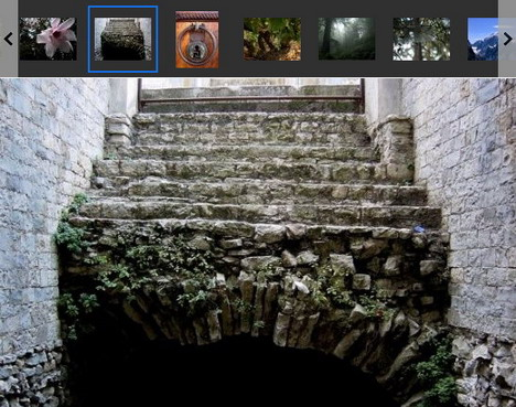 dm_albums_best_slideshow_and_photo_gallery_plugins_for_wordpress