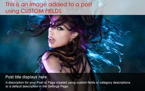 dynamic_content_gallery_best_slideshow_and_photo_gallery_plugins_for_wordpress