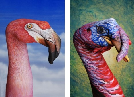 flamingo_and_turkey_best_animal_hand_painting