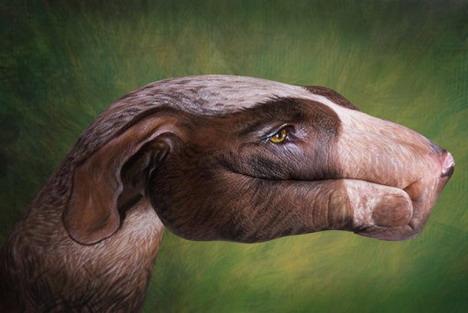 hound_dog_best_animal_hand_painting