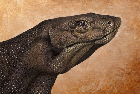 komodo_dragon_best_animal_hand_painting