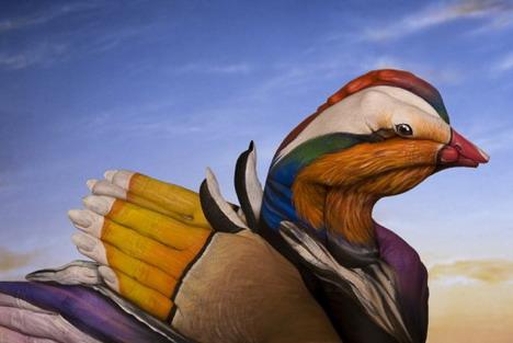 mandarin_duck_best_animal_hand_painting