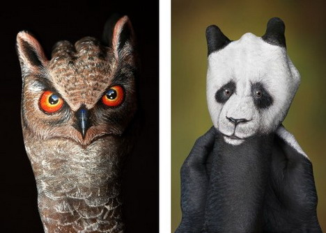owl_and_panda_best_animal_hand_painting