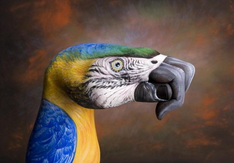 parrot_on_brown_best_animal_hand_painting