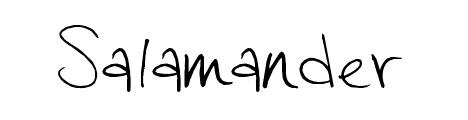 salamander_popular_free_hand_drawn_fonts