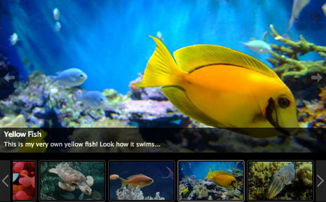 slideshow_gallery_best_slideshow_and_photo_gallery_plugins_for_wordpress