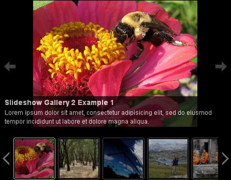 slideshow_gallery_pro_best_slideshow_and_photo_gallery_plugins_for_wordpress