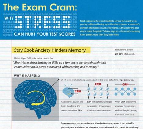 the_exam_cram_best_infographics