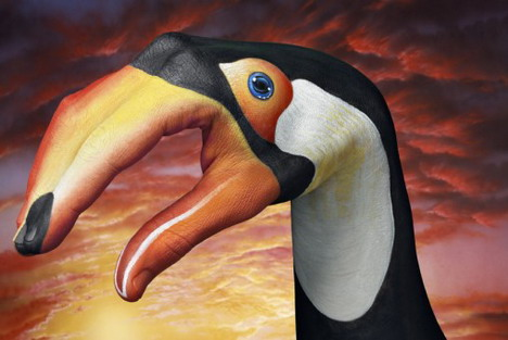 toucan_on_sky_best_animal_hand_painting