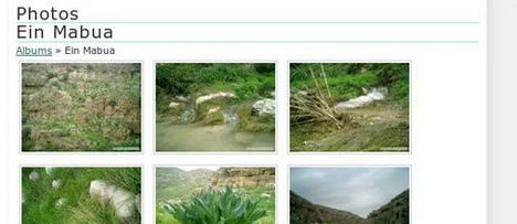 wp_photo_album_best_slideshow_and_photo_gallery_plugins_for_wordpress
