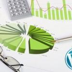 Top 29 Best WordPress Statistics and Analytics Plugins
