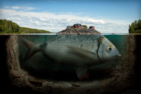 fishy_island_funny_creative_photo_manipulation_artworks