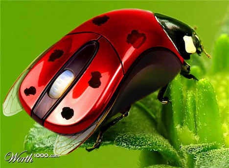 ladybird_computer_mouse_funny_creative_photo_manipulation_artworks