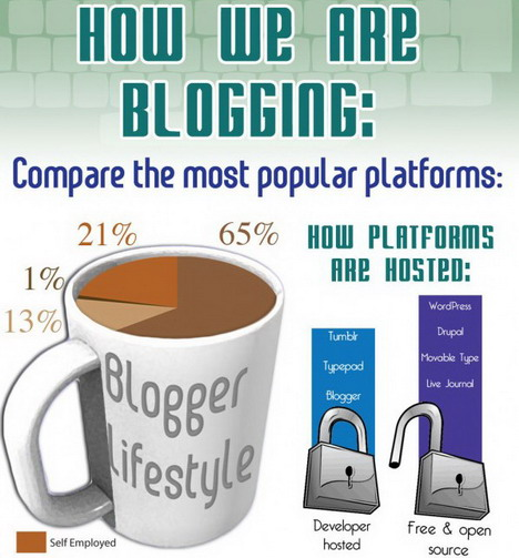 most_popular_blogging_platforms_compared_best_blogging_and_blogosphere_infographics