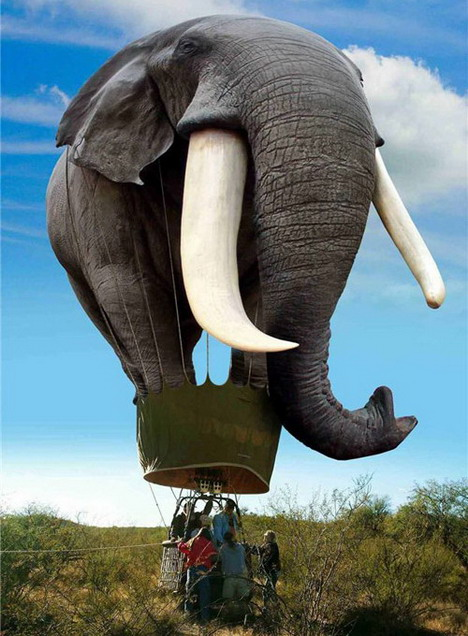 skydumbo_funny_creative_photo_manipulation_artworks