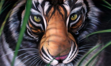 south_china_tiger_project_amazingly_beautiful_body_painting_photos