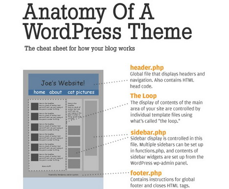 the_anatomy_of_a_wordpress_theme_best_blogging_and_blogosphere_infographics