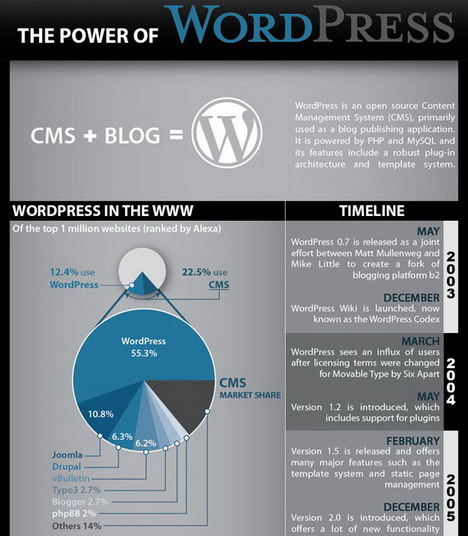 the_power_of_wordpress_best_blogging_and_blogosphere_infographics