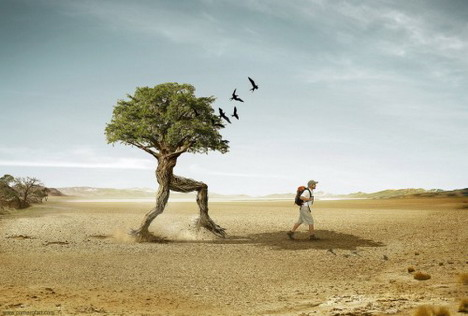 trees_walker_funny_creative_photo_manipulation_artworks