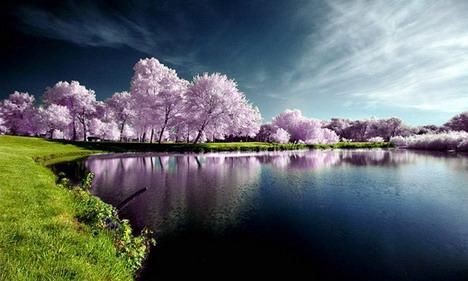 autumn_poolside_beautiful_nature_landscapes_photographs